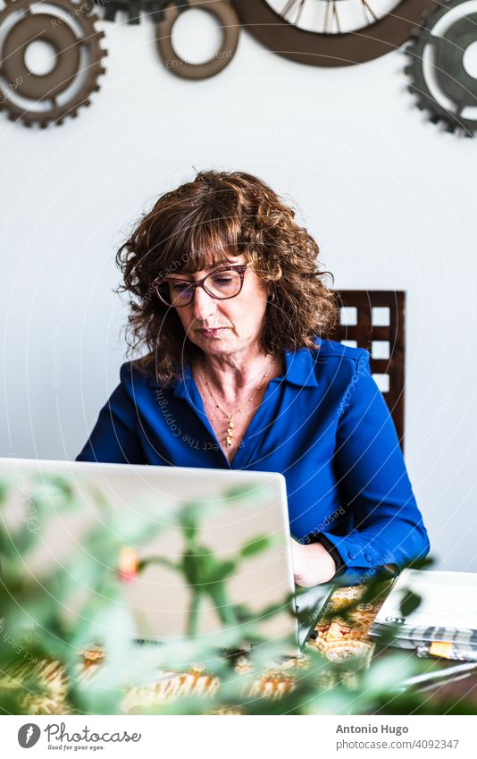 Middle-aged woman working with laptop computer in her living room. writing middle aged home sitting indoor communication female mature business desk