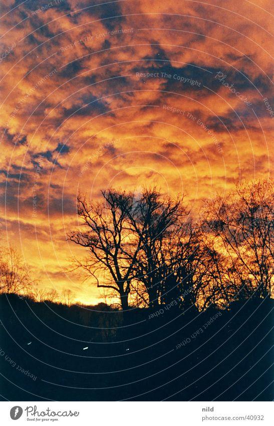 Sky Sun Moody Blaze Mystic