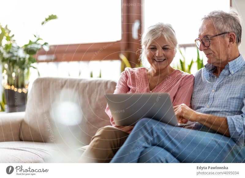Mature couple using a laptop while relaxing at home people woman adult senior mature casual attractive female smiling happy Caucasian toothy enjoying two people