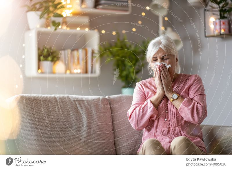 Senior woman blowing her nose people one person senior mature pensioners retiree retired retirement old elderly gray hair caucasian adult lifestyle beautiful