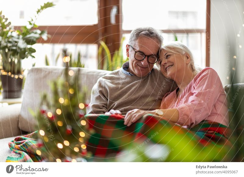 Senior couple sitting in the living room together during Christmas people woman adult senior mature casual attractive female smiling happy Caucasian toothy