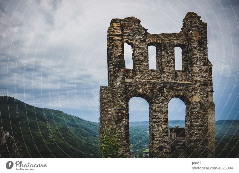 Old ruin Grevenburg at the Mosel Ruin Ruin Grevenburg Moselle Mosel (wine-growing area) Moselle dough Moselle valley River Hiking hikers Idyll