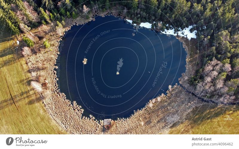 Aerial view with a drone in spring of a small lake with grey geese in Bavaria Aerial photograph drone photo Lake Body of water Water Moor lake Spring