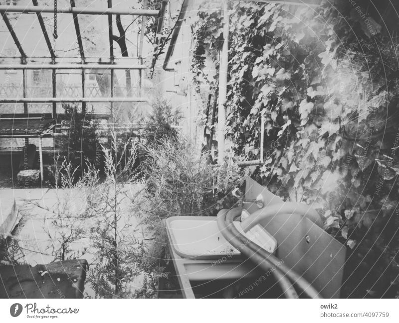 Ruinous Interior shot lost places Derelict Market garden Greenhouse Sink Hose Past Decline Old Plastic Metal Glass Transience abandoned Loneliness Insolvency