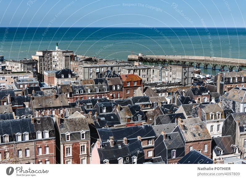 View of Le Tréport, a seaside town on the Albatre coast in France harbor ocean maritime top view house pier horizon panorama blue travel water Ocean landscape