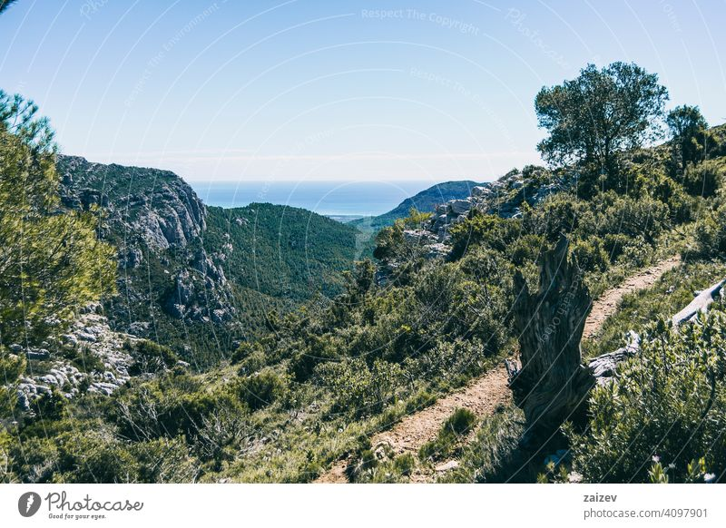 view from the top of a mountain in catalonia. eroded layered canyon nature outdoors travel destinations spain tarragona descent moment moody ascend haze huge