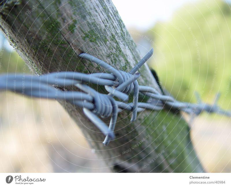 Graffiti Border Obscure Fence Pole Barbed wire