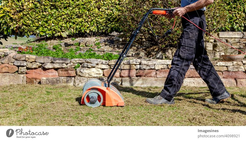 Spring gardening. Scarify, aerate lawn in the garden to improve the quality of the lawn in the spring. masculine Working man Man Gardener Floor ventilation Lawn