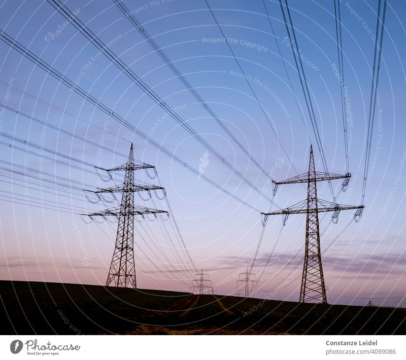 Power lines in the morning sky High voltage power line Dawn Blue sky blue hour Perspective Deserted Landscape Exterior shot Colour photo