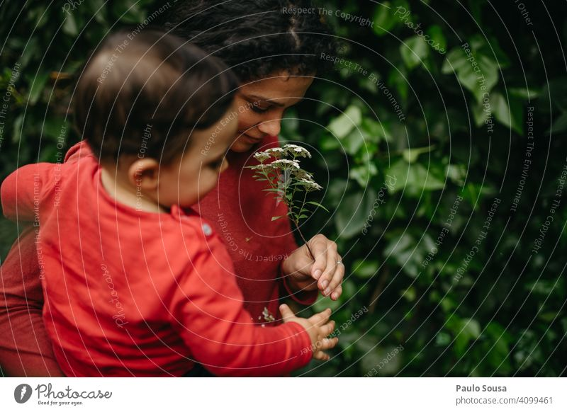 Mother with Son smelling flower Woman Mother's Day motherhood Child Caucasian Flower Spring Foliage plant Authentic Family & Relations Park people Together