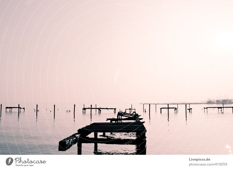 Sky Nature Water Sun Landscape Calm Environment Autumn Wood Lake Pink Idyll Fog Illuminate Beautiful weather Lakeside