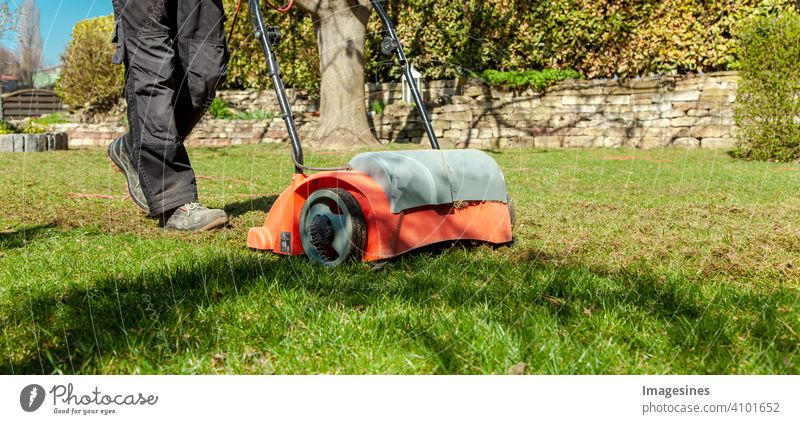 Spring gardening. Scarifying in the garden to improve the quality of the lawn in the spring. masculine Working man Man Gardener Floor ventilation Lawn Ground