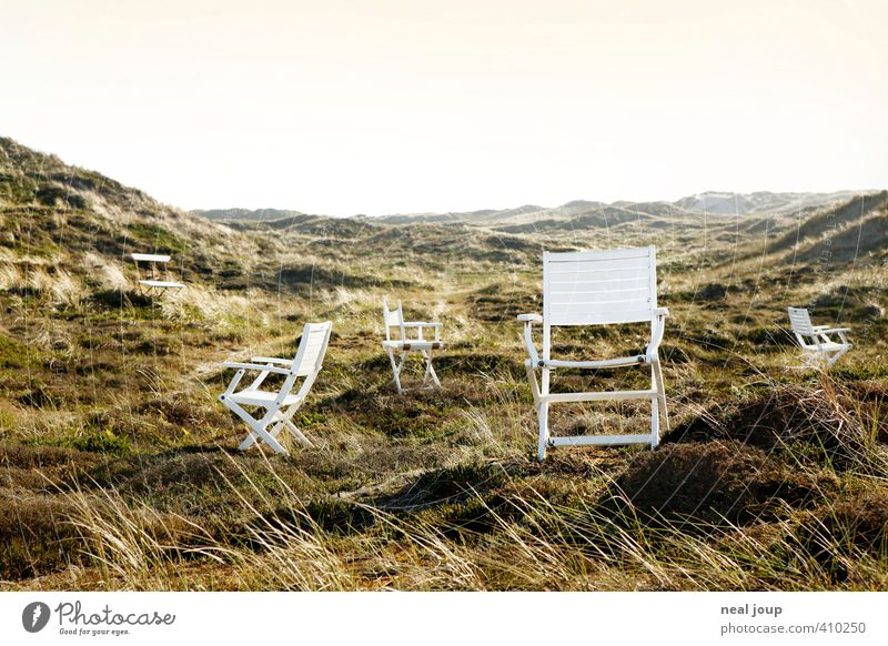 Seat in the dune Harmonious Well-being Relaxation Calm Vacation & Travel Freedom Summer vacation Landscape Dune Marram grass Denmark Chair Wood Esthetic