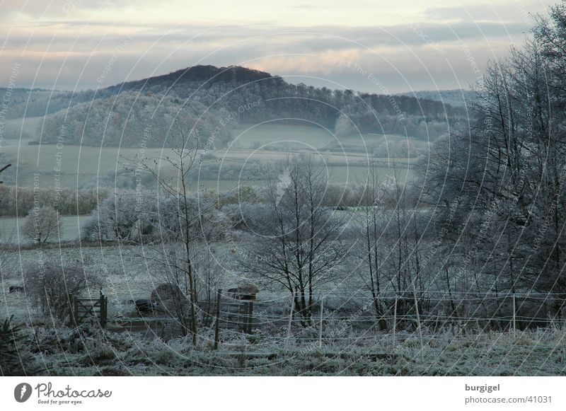 View into the valley Fog Calm Tree Hill Mountain Valley Frost Landscape