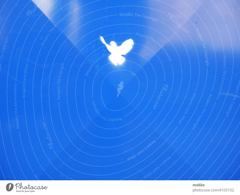 Peace dove on blue tin Dove of peace Pigeon White Blue Sign symbol Symbols and metaphors Bird Minimalistic Hope Peaceful Characters Freedom Tin Trash container