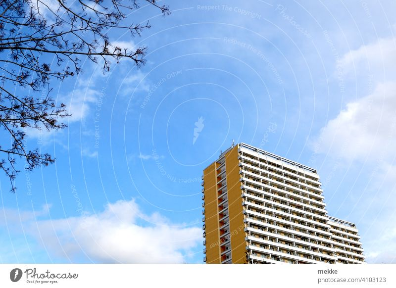 Apartment block in spring sunshine High-rise Sky Clouds Spring Tree Facade Architecture Manmade structures Town Tall Worm's-eye view Building urbantrist