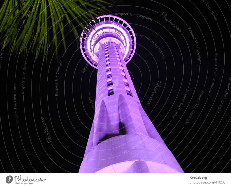 Architecture New Zealand Night shot Auckland Sky Tower