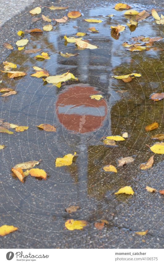 No entry sign reflected in puddle of autumn leaves Signs and labeling Road sign Verkerssicherheit Safety Prohibition sign interdiction Highway ramp (entrance)