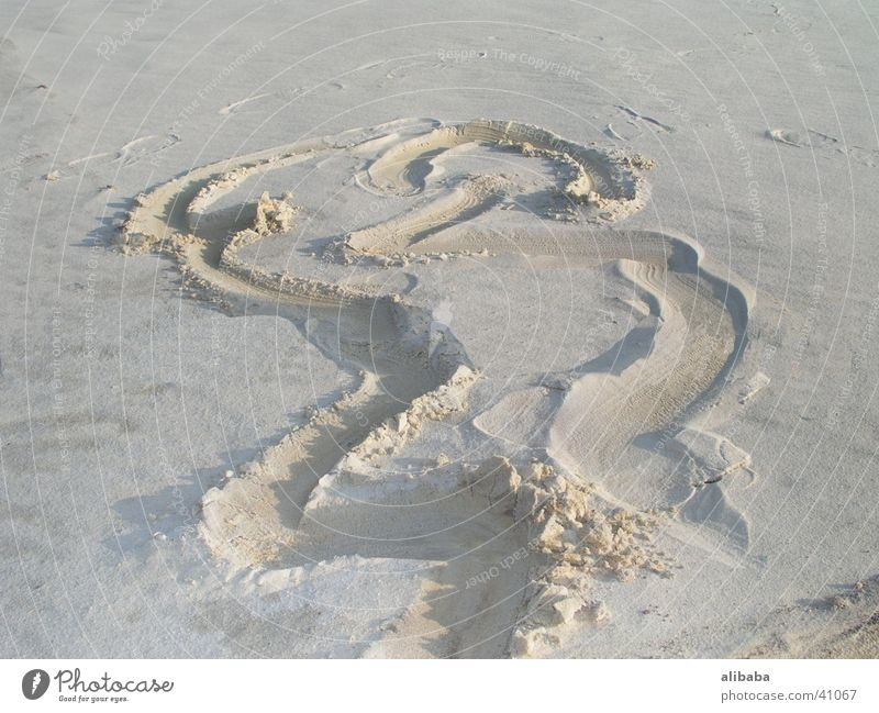 Sand Tracks Footprint