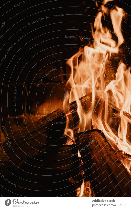 Big fire of firewood in dark night flame bonfire warm heat nature light travel bright hot fireplace campfire forest blaze burn red rescue holiday burning cozy