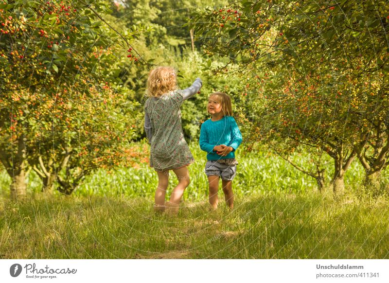 Human being Child Nature Green Summer Girl Landscape Joy Environment Life Meadow Playing Happy Garden Friendship Together