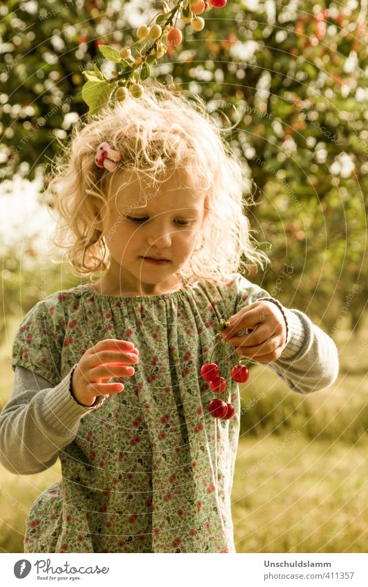 Human being Child Summer Sun Tree Girl Joy Life Emotions Grass Hair and hairstyles Bright Garden Food Leisure and hobbies Fruit