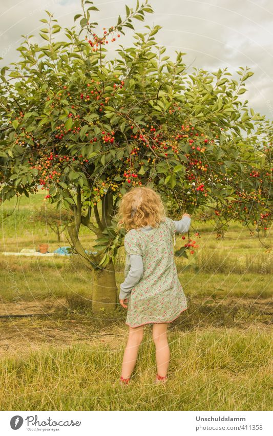 Human being Child Nature Green Summer Tree Girl Landscape Joy Environment Warmth Life Happy Garden Moody Leisure and hobbies