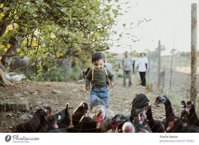 Child playing with ducks Caucasian 1 - 3 years Duck Farm Farm animal Duck birds Nature Authentic Curiosity Love of animals Cute Colour photo childhood