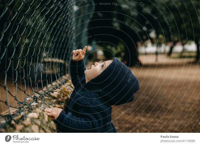 Child looking up and pointing up 1 - 3 years Day Playing Point Looking Boy (child) Exterior shot Happiness Human being Colour photo Infancy Toddler Joy Discover