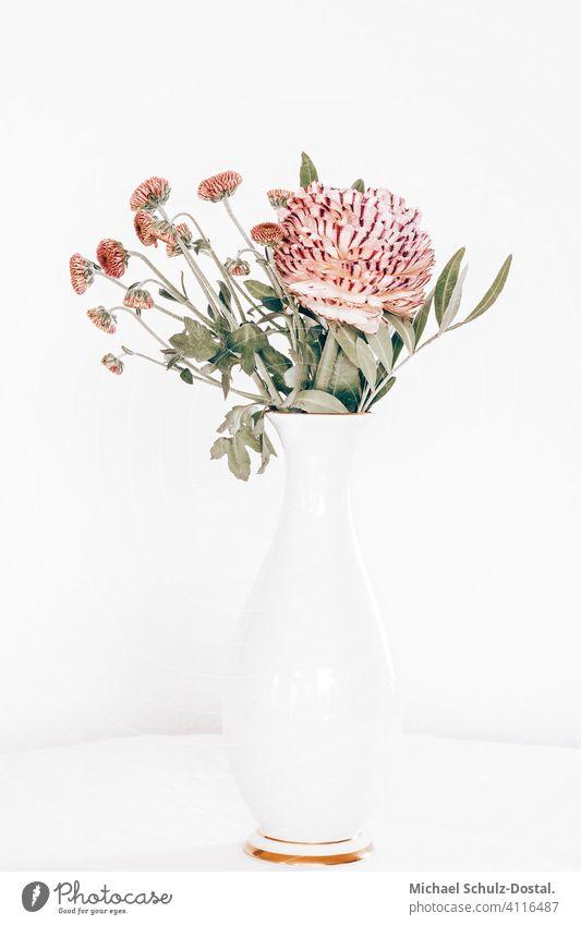 filigree pink flower bouquet in white vase with golden rim Flower Plant Ornamental plant pretty Calm schedules calm quiet Green green silent Still Life