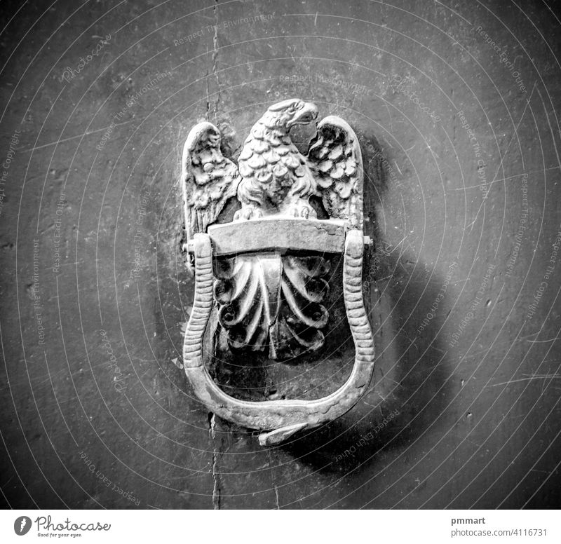 eagle, artistic knocker of the ancient door city closure metal wood historic palace stone lock woodworm time craftsman blacksmith animals protection ringing