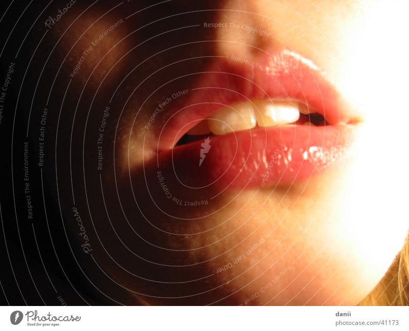 mouth Red Woman Feminine Lips Mouth kiss immediately