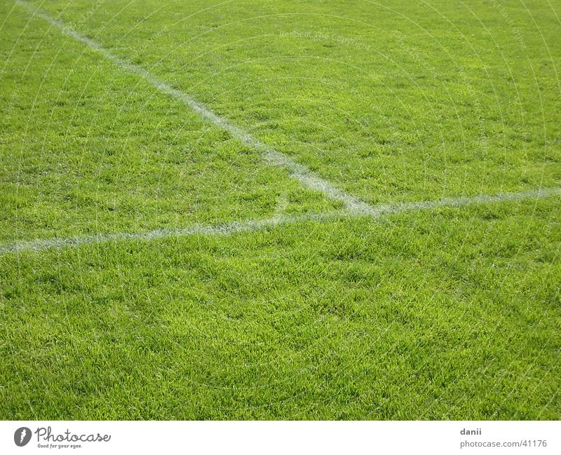 Green Sports Soccer Lawn Playing field Football pitch Sporting grounds