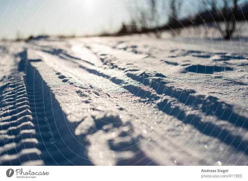 tracks Skiing Nature Landscape Earth Sun Winter Climate Beautiful weather Ice Frost Snow Line Stripe Ski tracks Cross-country ski trail Glittering Cold Blue