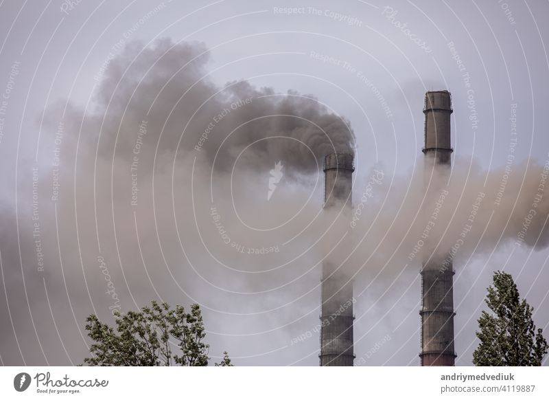 Smoke from the pipes of heat station air vapor ozone ecology energy technology apocalypse power atmosphere blue breathe chimney chimneys cloud factory global