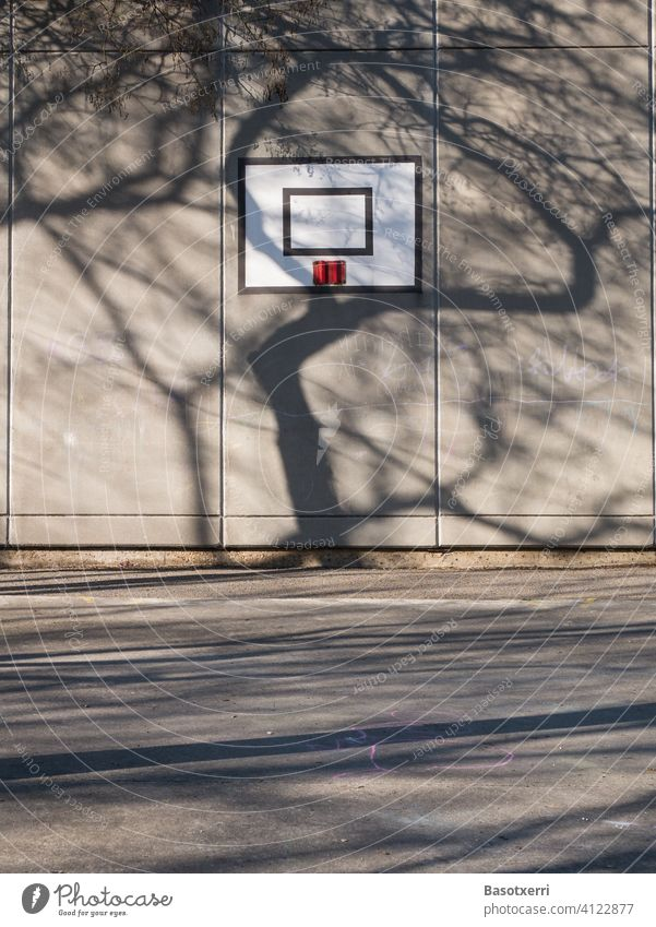 Shadow of a tree falls on a building wall with basketball hoop. Schoolyard in Vitoria, Basque Country, Spain Tree Spring Building Basketball Wall (building)