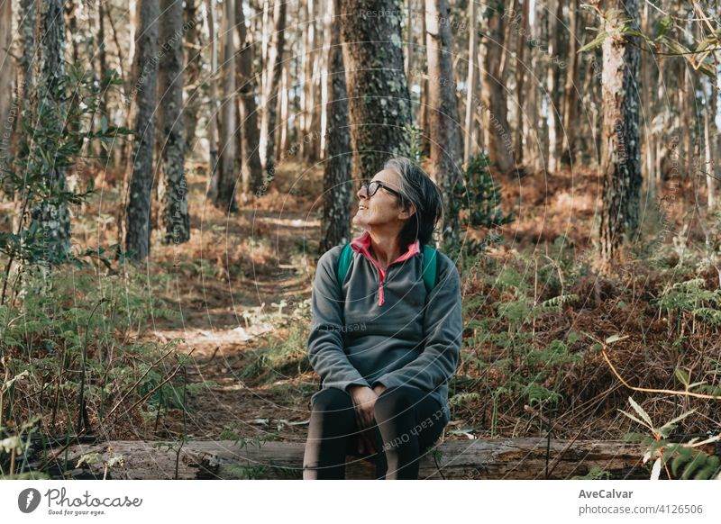 Old woman sitting over a trunk in the forest during a autumnal day with copy space, wellness trekking a jogging concepts person female elderly retirement senior