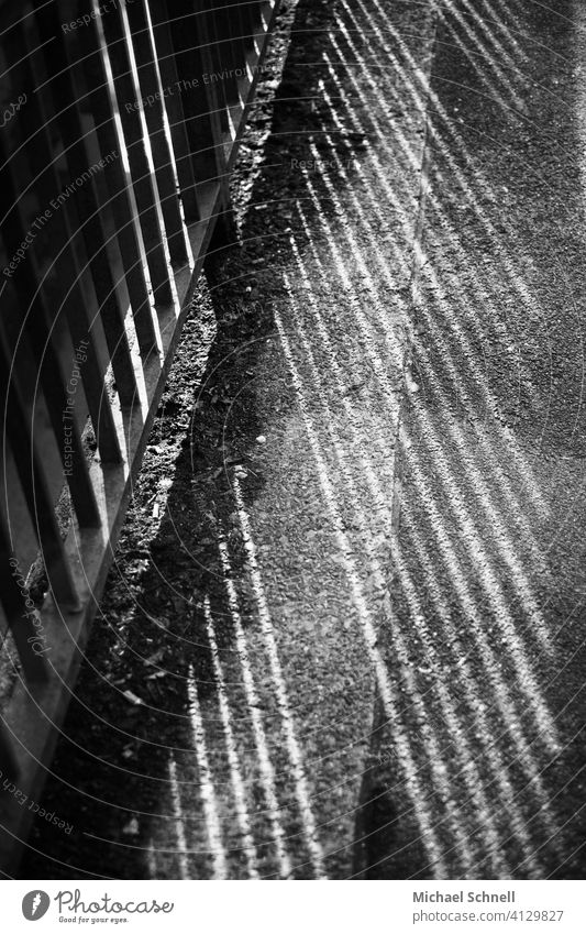 Shadow from a railing on a sidewalk Light Light and shadow Pattern Structures and shapes Abstract Deserted Sunlight Line Sidewalk Black & white photo Gray