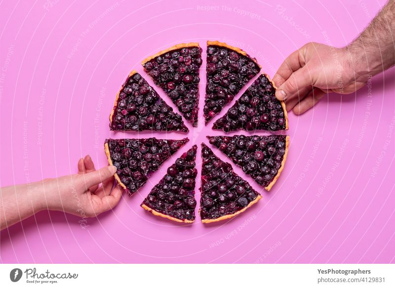 Blueberry pie top view isolated on purple background. Hands grabbing slices of pie. above autumn baked baked goods bakery berries blueberries blueberry cake