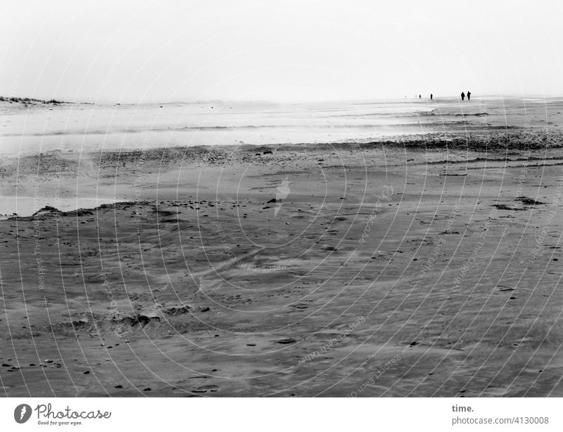 shore leave Beach Sand Horizon Water North Sea Ocean inhospitable wide Far-off places To go for a walk Hiking hike coast Gray duene