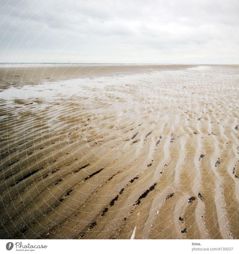 Lifelines #142 Beach Sand Horizon Water seashells wavy lines Clouds Sky Deserted Tideway watt