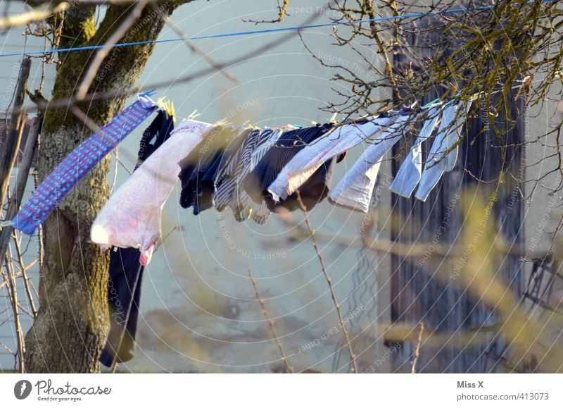 clothesline Living or residing Garden Weather Beautiful weather Wind Clothing Hang Fresh Wet Clean Dry Emotions Cleanliness Purity Clothesline Laundry Washing