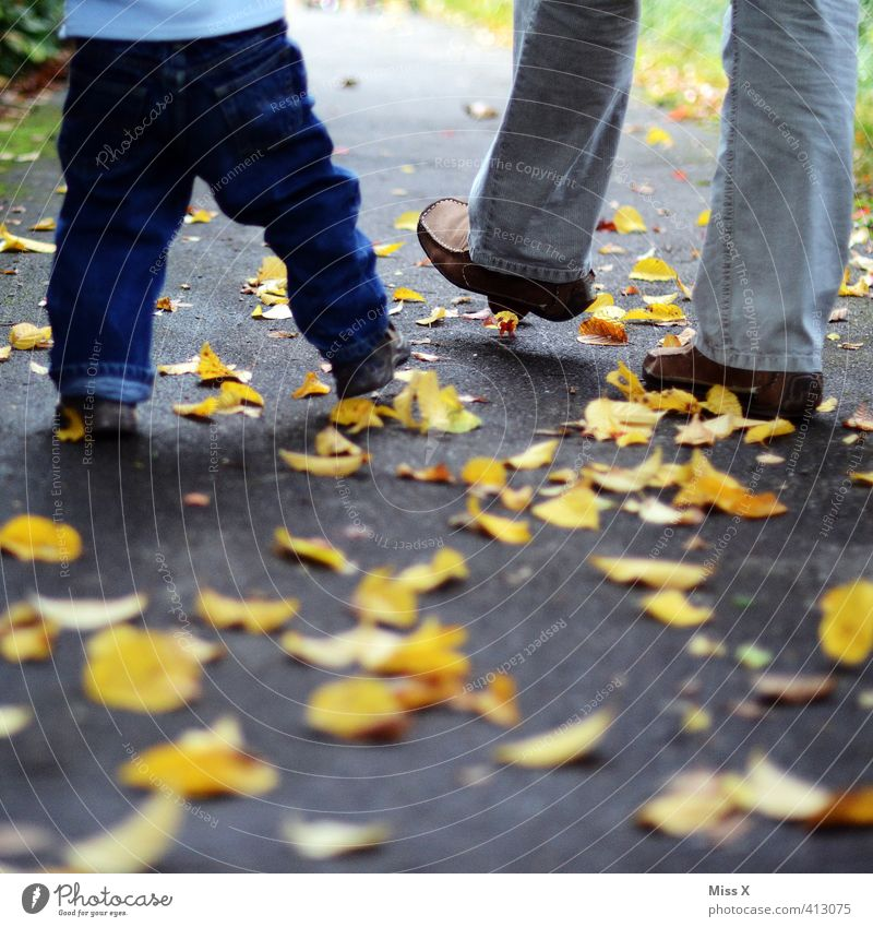 autumn walk Human being Baby Toddler Parents Adults Mother Father Family & Relations Infancy Life Legs Feet 2 1 - 3 years 18 - 30 years Youth (Young adults)