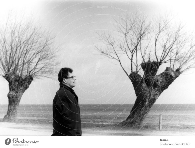 three willows Loneliness Coat Baltic Sea Man Gale Wind April Cold Ocean Beach Tree Eyeglasses Jacket Freeze Vacation & Travel coast Funny Hair and hairstyles