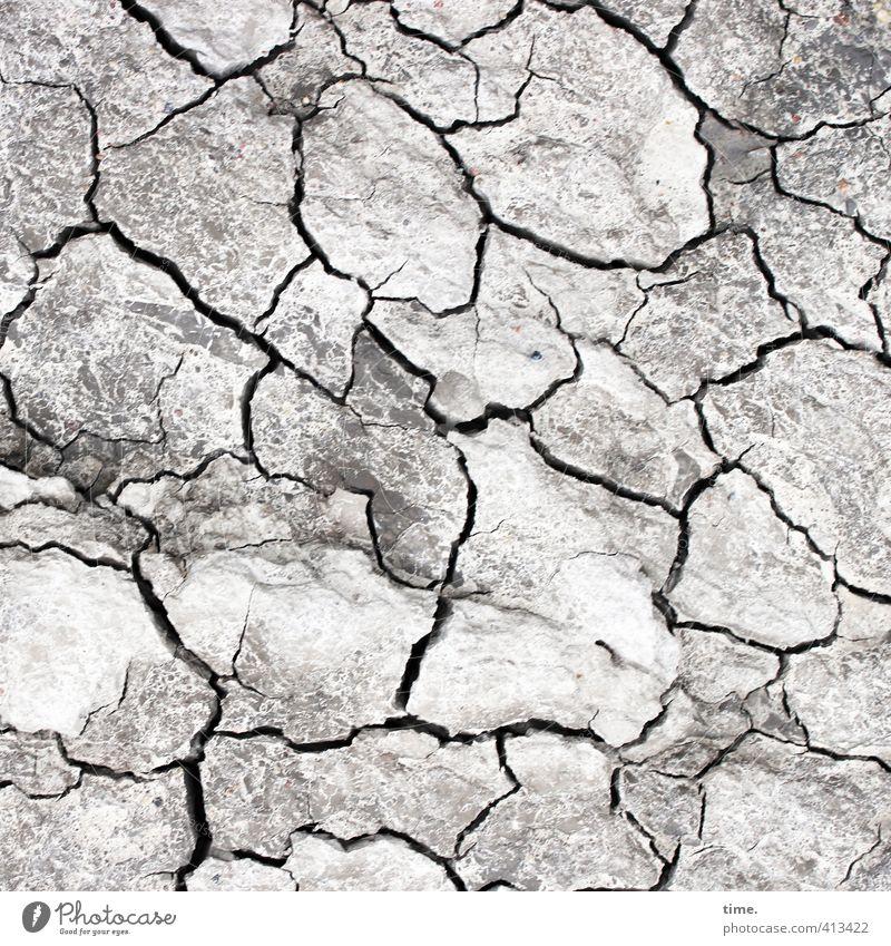 Hiddensee | Lifelines #69 Environment Landscape Earth Sand Drought Coast Baltic Sea Crack & Rip & Tear Furrow Endurance Unwavering Modest Exhaustion Design