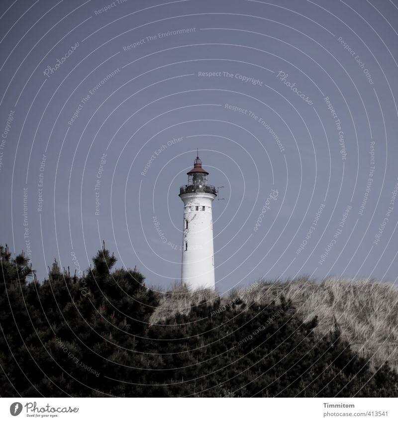 Lyngvig Fyr. Vacation & Travel Environment Nature Sky Plant Denmark Deserted Lighthouse Stand Cool (slang) Simple Blue Black White Spire Dune Bushes