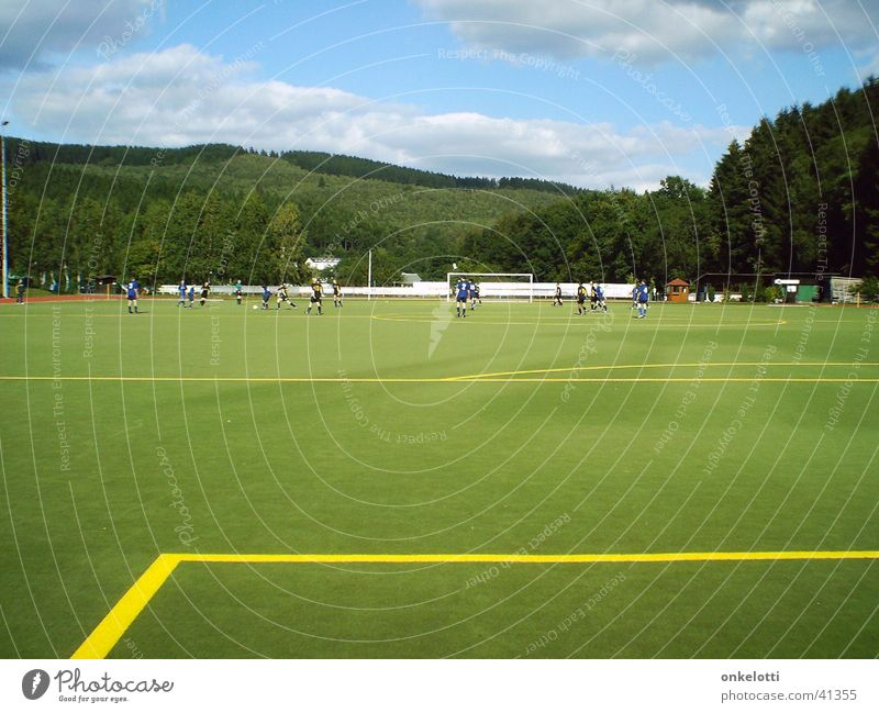 Artificial turf Dietzhöztal Artificial lawn Sporting grounds Green Yellow Forest Sports Lawn Line