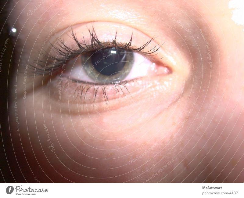 Eyes Photographic technology