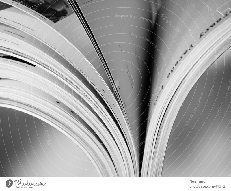 open book Book Brochure Stick Undo Paper To leaf (through a book) Side Black & white photo Macro (Extreme close-up) picture catalogue
