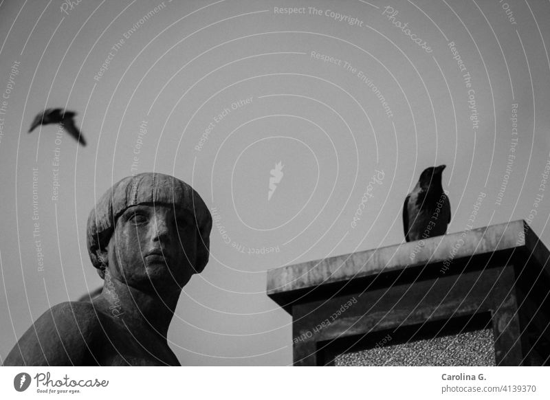 Woman statue with two birds in black and white Oslo female statue Statue Monument Art Tourist Attraction Sky freedom depression hope concept options flying